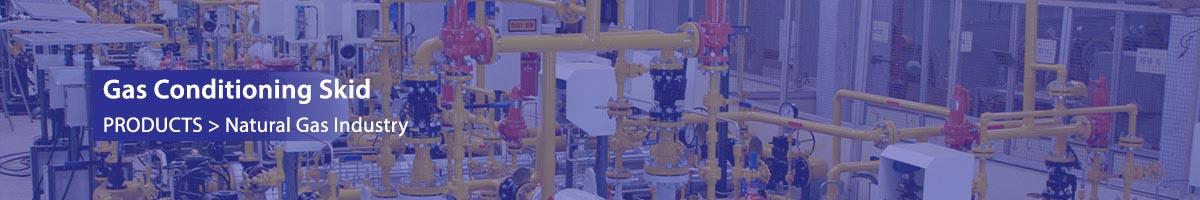 Gas Conditioning Skid | Nirmal Industrial Controls Pvt Ltd